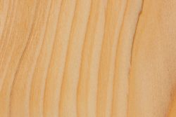 Subalpine Fir | The Wood Database - Lumber Identification