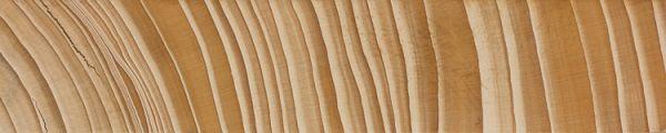 Balsam fir (endgrain 1x)