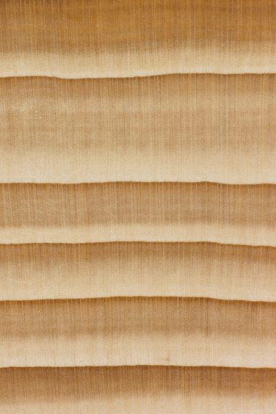 Balsam fir (endgrain 10x)