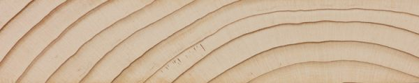 Grand fir (endgrain 1x)