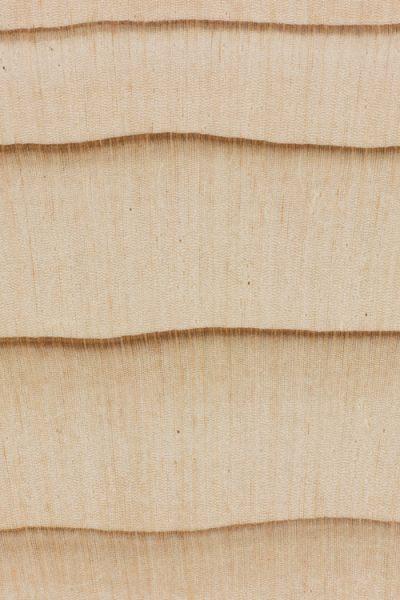 Grand fir (endgrain 10x)