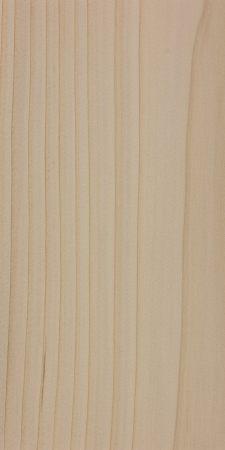 Nikko fir (Abies homolepis)