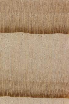 Nikko fir (endgrain 10x)