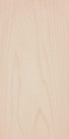 Subalpine fir (Abies lasiocarpa)