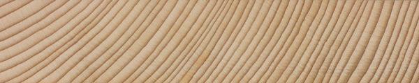 California red fir (endgrain 1x)