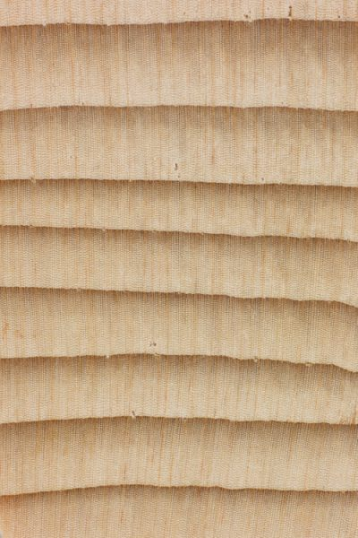 California red fir (endgrain 10x)