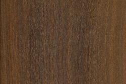 Gidgee (Acacia cambagei)