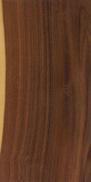 Bendee (Acacia catenulata)