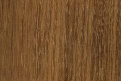 Australian blackwood (Acacia melanoxylon)