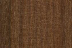 Yarran (Acacia omalophylla)