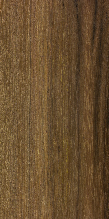 Myall The Wood Database Lumber Identification Hardwood