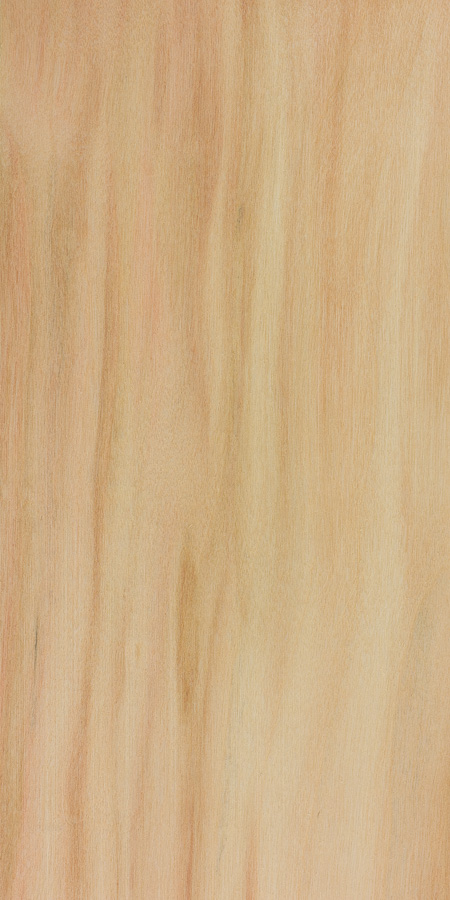 Box Elder | The Wood Database - Lumber Identification (Hardwood)