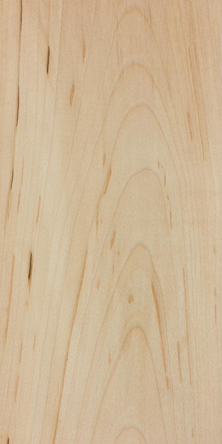 Black Maple The Wood Database Lumber Identification Hardwood