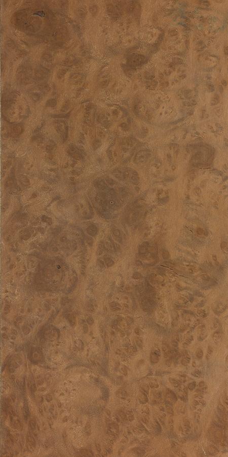 Hard maple | The Wood Database - Lumber Identification
