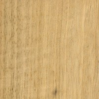 White Limba (sealed)