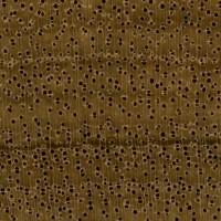 African Walnut (endgrain 10x)