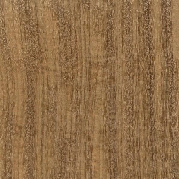 Afrormosia (Pericopsis elata)