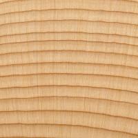 Alaskan Yellow Cedar (endgrain 10x)
