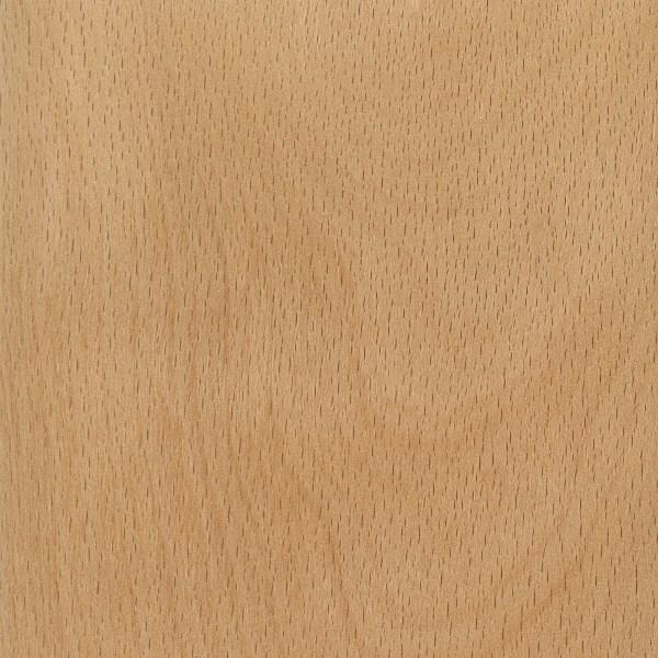 American beech the wood database lumber identification for The beechwood