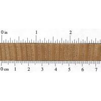 American Chestnut (endgrain)