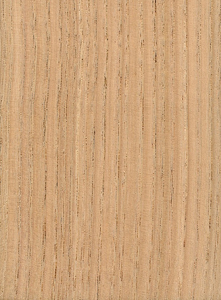American Chestnut The Wood Database Lumber
