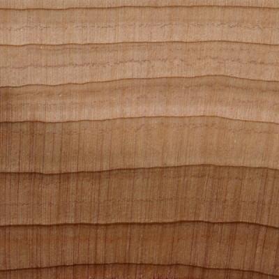 Aromatic Red Cedar (endgrain 10x)
