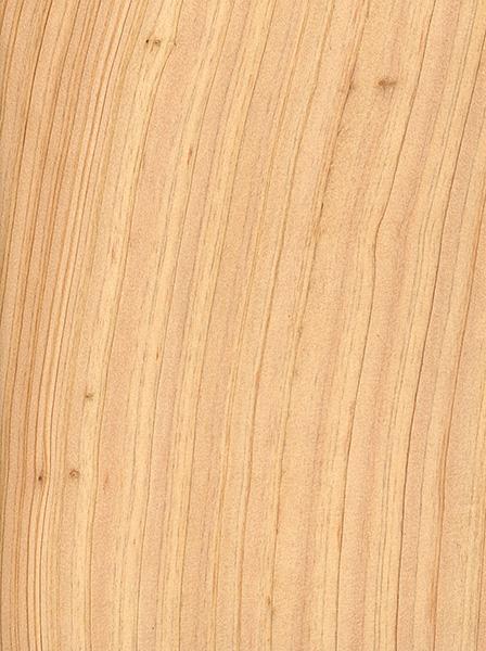 Atlantic White Cedar The Wood Database Lumber