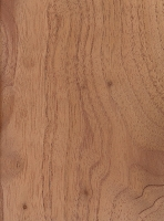 Australian Red Cedar (Toona ciliata)