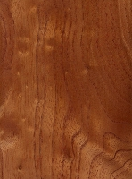 Australian Red Cedar (sealed)