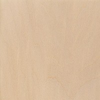 Basswood (Tilia americana)