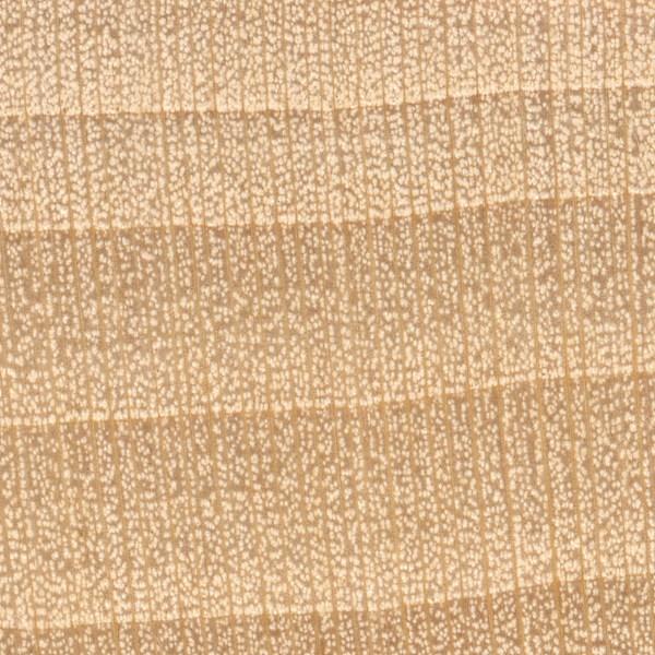 Basswood The Wood Database Lumber Identification