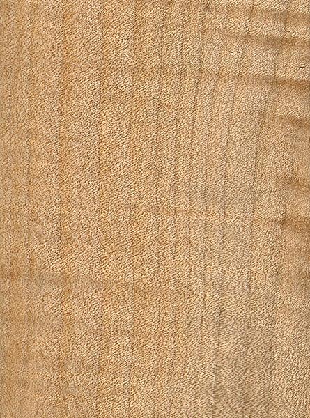 Bigleaf Maple The Wood Database Lumber Identification