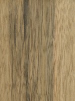 Black Limba (sealed)