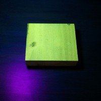 Black Locust: fluorescence (under blacklight)