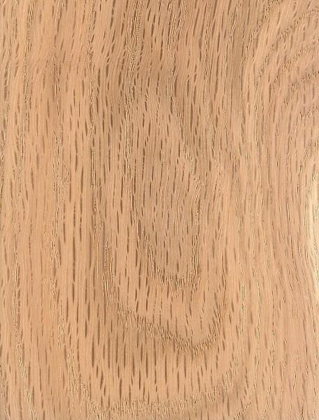 black oak the wood database lumber identification (hardwood)black oak