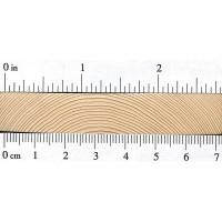 Black Spruce (endgrain)