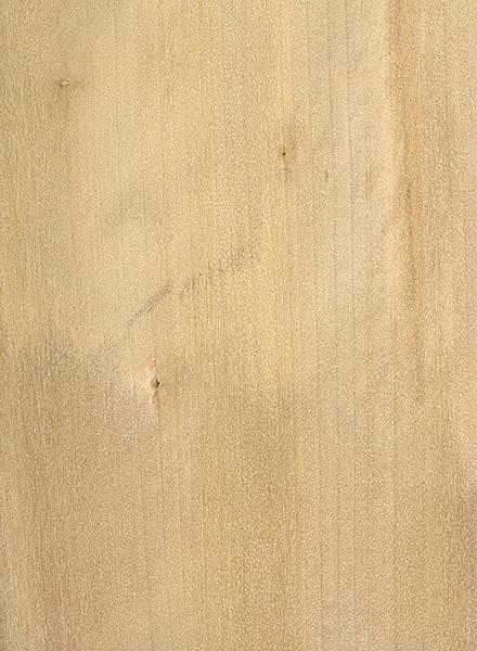 tree lumber