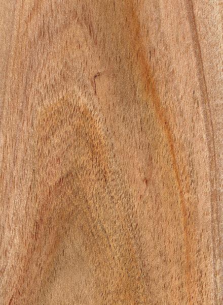 Shittim The Wood Database Lumber Identification Hardwood