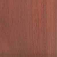 Bloodwood (Brosimum rubescens)