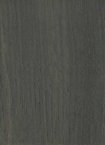 Bog oak the wood database lumber identification hardwood