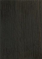 Bog Oak (sealed)
