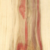 Box Elder (sealed)