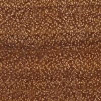 Brazilwood (endgrain 10x)