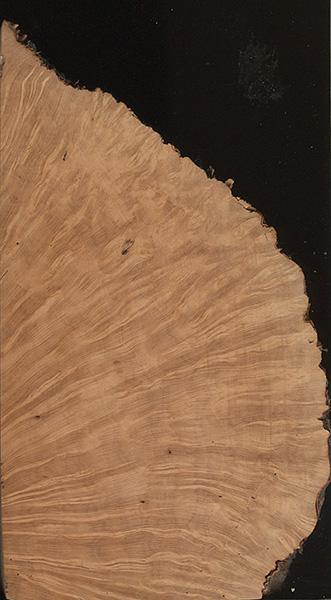 Briar The Wood Database Lumber Identification Hardwood