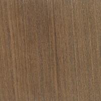 Brown Ebony (Caesalpinia paraguariensis)