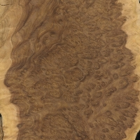 Brown Mallee burl (sealed)