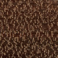 Bulletwood (endgrain 10x)