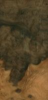 """Camphor burl (15"""" x 7.6"""")"""