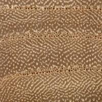 Cedar Elm (endgrain 10x)