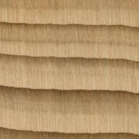 Cedar of Lebanon (endgrain 10x)